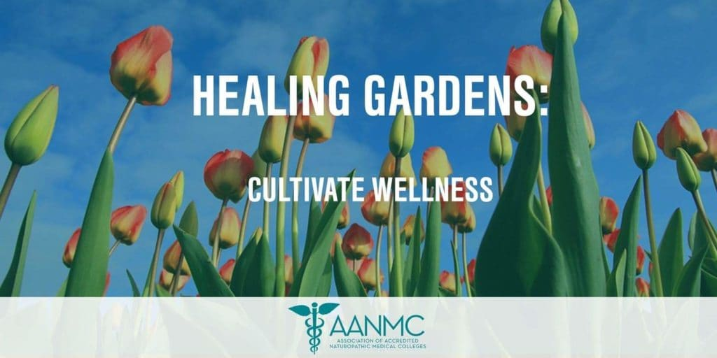 Healing-Gardens-for-Health