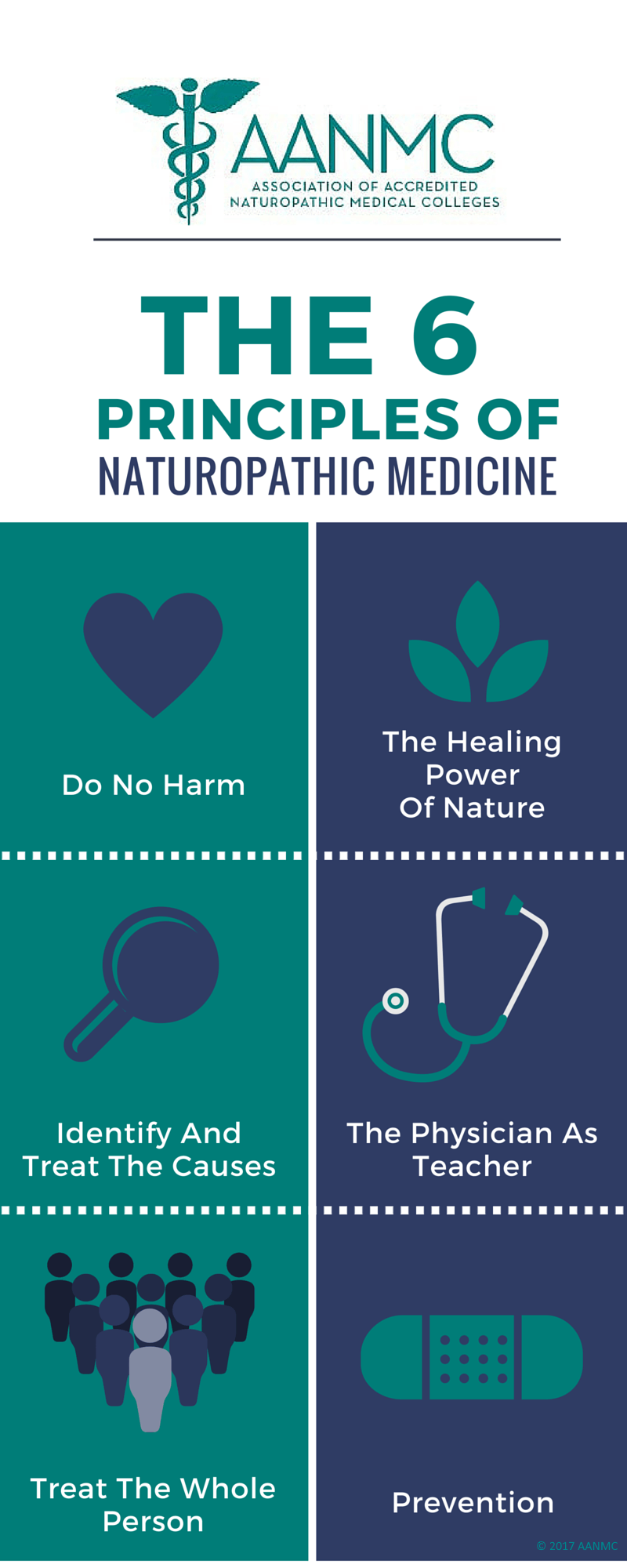 6 principles of naturopathic medicine