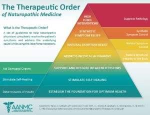 Therapeutic Order of Naturopathic Medicine
