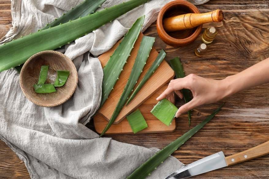 Aloe vera leaves, a mortar an pestle, a knife, and a gray kitchen towel on a wooden surface.