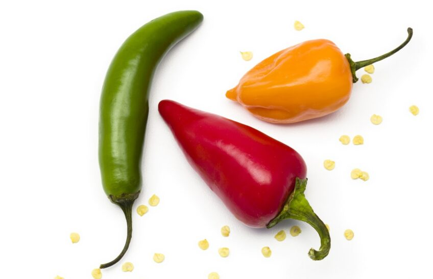 Green, yellow, and red chili peppers on a white background.